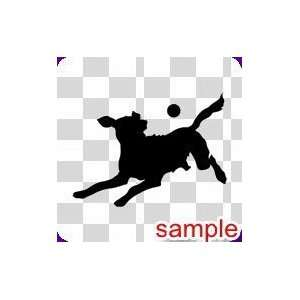DOGS DOG FETCH 10 WHITE VINYL DECAL STICKER Everything