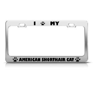 American Shorthair Cat Chrome license plate frame Stainless Metal Tag