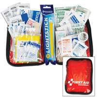 Essential Vehicle First Aid Kit