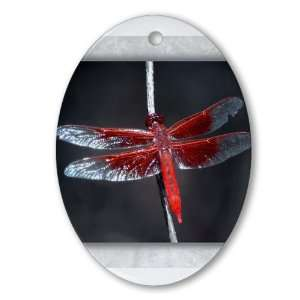 Ornament (Oval) Red Flame Dragonfly