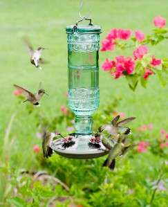 Avant Garden Antique Bottle Hummingbird Feeder 8108 2